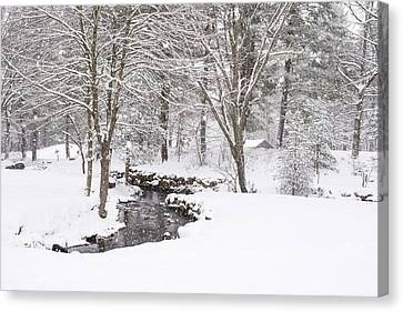 Sudbury Ma Canvas Print - Sudbury Ma Winter Stream by Toby McGuire