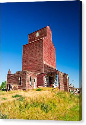 Suffolk Red Canvas Print by Todd Klassy