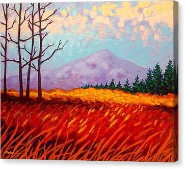 Sugar Loaf - Wicklow - Ireland Canvas Print