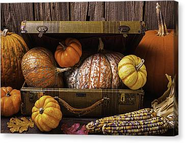 Suitcase Full Of Pumpkins Canvas Print by Garry Gay