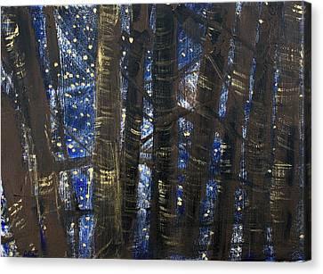 Sukkos Canvas Print - Sukkot II Stars 2015035  by Alyse Radenovic