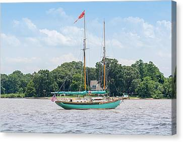 Canvas Print featuring the photograph Sultana On The Chester by Charles Kraus