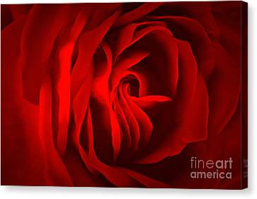 Sultry Mood Canvas Print