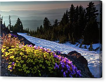Canvas Print featuring the photograph Summer And Winter by David Chandler