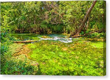 Canvas Print featuring the photograph Summer At Alley Springs by John M Bailey