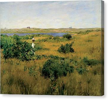 Windswept Canvas Print - Summer At Shinnecock Hills by William Merritt Chase