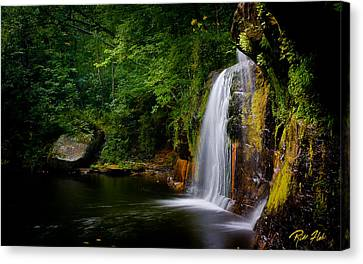 Canvas Print featuring the photograph Summer At Wolf Creek Falls by Rikk Flohr