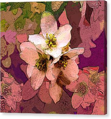 Summer Blossom Canvas Print
