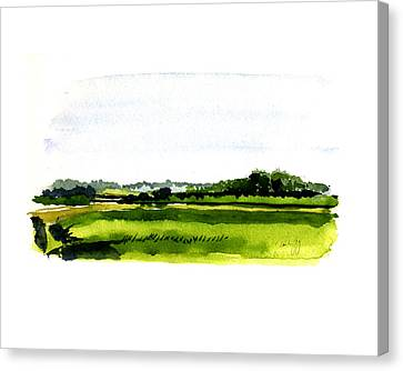 Summer Bog At Marstons Mills Canvas Print by Paul Gaj