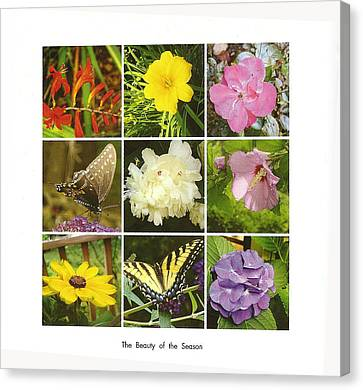 Canvas Print featuring the photograph Summer Botanical Collage by Margie Avellino
