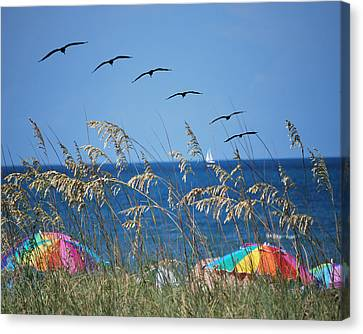 Summer Breeze Canvas Print by Adele Moscaritolo