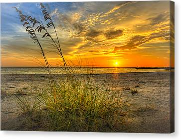 Weathered Canvas Print - Summer Breezes by Marvin Spates