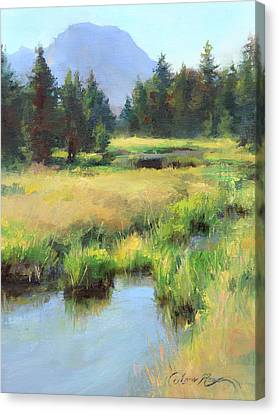 Summer Calm In The Grand Tetons Canvas Print by Anna Rose Bain