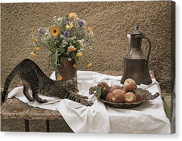 Summer Composition With Cat Canvas Print by Floriana Barbu