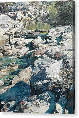 Canvas Print - Summer Creek by Nadi Spencer
