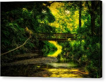 Summer Creek Canvas Print by Thomas Woolworth