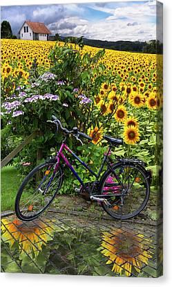 Summer Cycling Canvas Print by Debra and Dave Vanderlaan