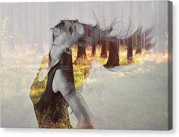 Summer Dance Canvas Print by Martin Capek