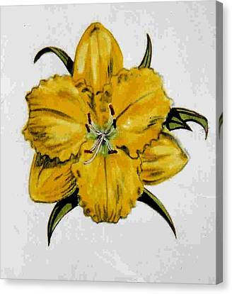 Summer Daylily Canvas Print by Dy Witt