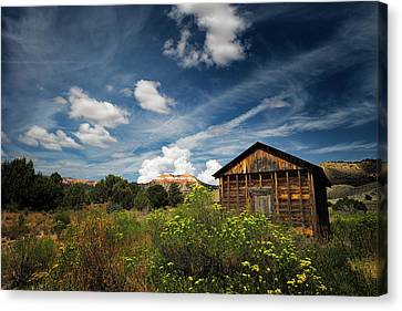 Zion National Park Canvas Print - Summer by Edgars Erglis