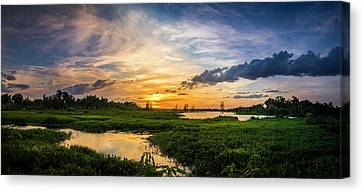 Wetland Canvas Print - Summer Escape by Marvin Spates