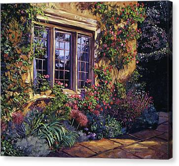 Summer Evening Glow Canvas Print by David Lloyd Glover