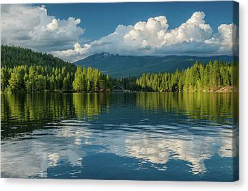 Summer Evening On The Siskiyou Canvas Print by Greg Nyquist
