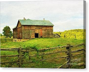 Summer Farm Moment Canvas Print