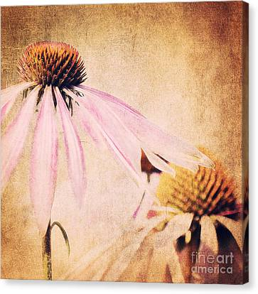Summer Feeling Canvas Print by Angela Doelling AD DESIGN Photo and PhotoArt