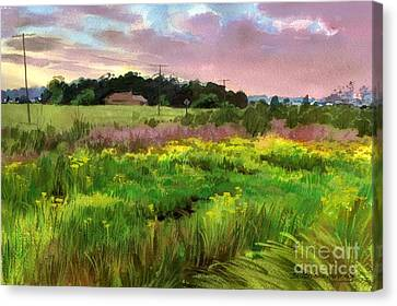 Summer Field Canvas Print by Sergey Zhiboedov