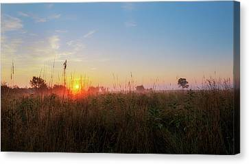 Summer Fields 2016 Canvas Print