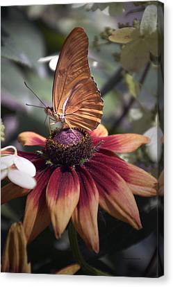 Invertebrates Canvas Print - Summer Floral With Butterfly 03 Vertical by Thomas Woolworth