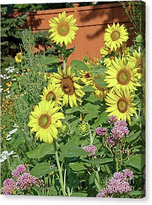 Canvas Print - Summer Garden by Natural Focal Point Photography