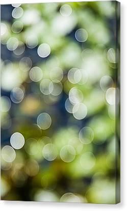 Summer Glitter Canvas Print