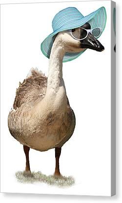 Summer Goose Canvas Print
