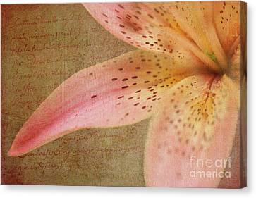Summer Greetings Canvas Print by Beve Brown-Clark Photography