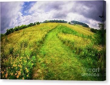 Canvas Print featuring the painting Summer Hike Through Blue Ridge Flowers Ap by Dan Carmichael