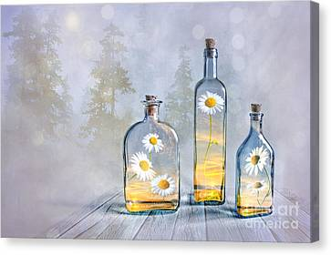 Summer In A Bottle Canvas Print by Veikko Suikkanen