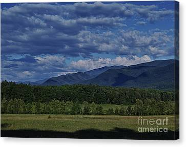 Canvas Print featuring the photograph Summer In Cades Cove by Douglas Stucky