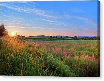 Canvas Print featuring the photograph Summer In The Hills 2017 by Bill Wakeley