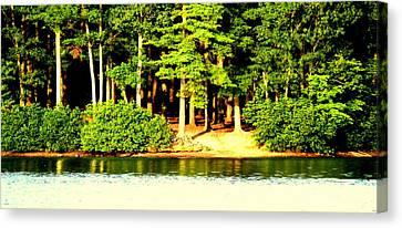 Summer Lake Canvas Print by Aron Chervin