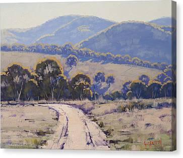 Gum Trees Canvas Print - Summer Light Lithgow by Graham Gercken