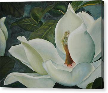 Summer Magnolia Canvas Print