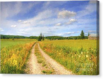 Summer Meadows Canvas Print by Veikko Suikkanen