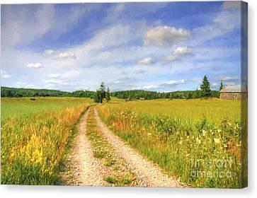 Harmonious Canvas Print - Summer Meadows by Veikko Suikkanen