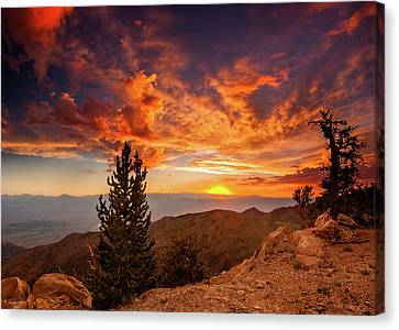 Summer Monsoon Over The Owens Canvas Print by Dan Holmes