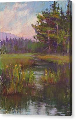Summer Morning Beaver Marsh Canvas Print by Susan Williamson