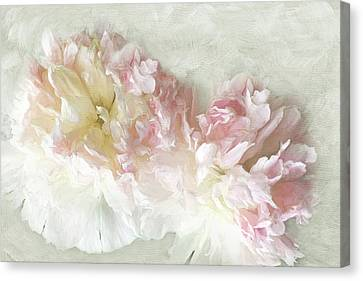 Summer Peony Canvas Print by Karen Lynch