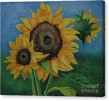 Summer Radiance Canvas Print by Louise Williams