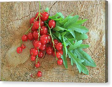 Summer, Red Berries And Rucola On Wooden Board Canvas Print